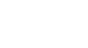 Geo Business